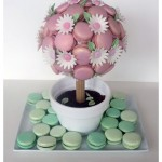 018 Daisie's 18th MacaronTree